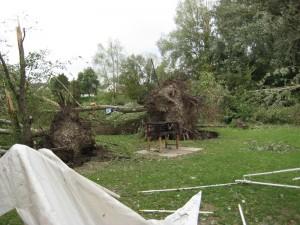 Sturm_2_2008